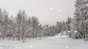 nieve para dibujar