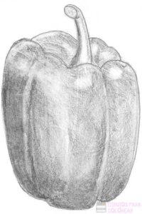 chile verde dibujo