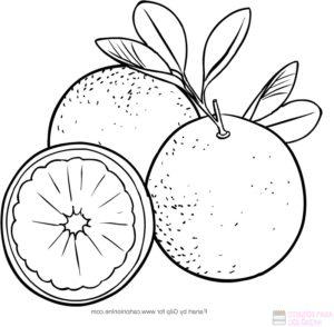 como dibujar naranjas