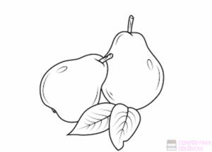 como se dibuja una pera