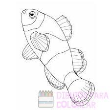 dibujos de pescados para imprimir