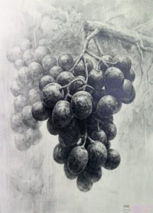 fotos de racimos de uvas