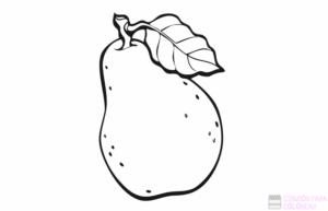 fruta de pera