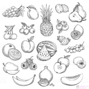 frutas y verduras animadas