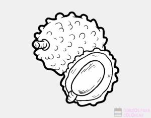 imagenes de guayabas para colorear