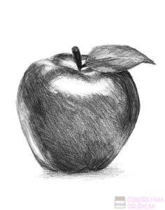 imagenes de manzanas para dibujar