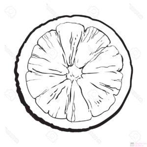 imagenes de naranjas para dibujar