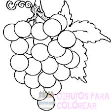 imagenes de uvas