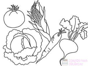 las verduras para colorear