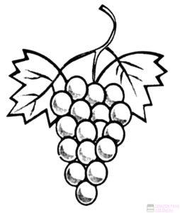 uvas animadas