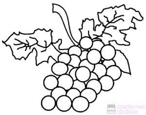 uvas dibujo para colorear