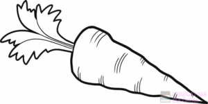 zanahoria para dibujar
