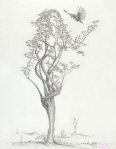 arbol con raices dibujo