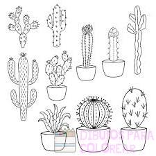 cactus caricatura