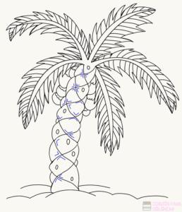 dibujo palmeras para pintar