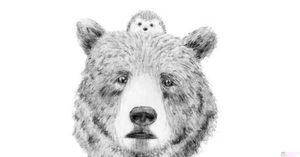 dibujos para iluminar de animales