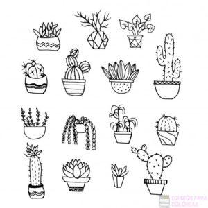figuras de cactus
