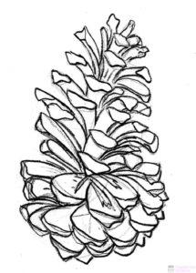 figuras de pinos