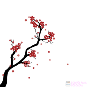 flor del cerezo dibujo