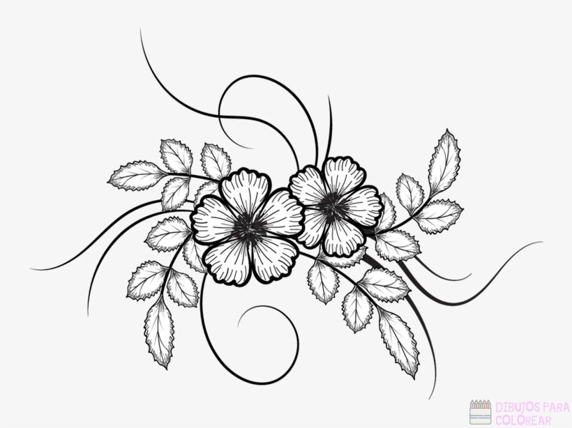 Áˆ Dibujos De Flores Top Faciles Para Colorear