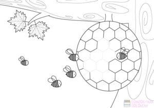 panal de abejas dibujo