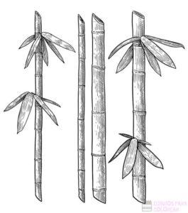 pinturas de bambu