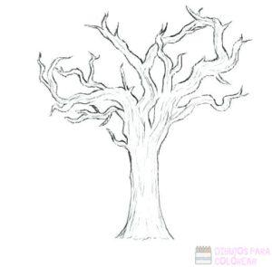 tronco arbol dibujo
