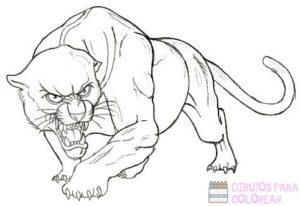 como dibujar a pantera negra