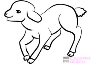 imagenes de ovejas en caricatura