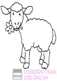imagenes de ovejas para colorear