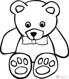 oso dibujo