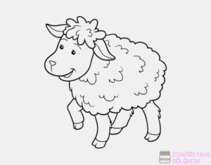 ovejas graciosas