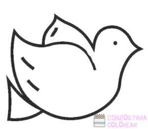 paloma de la paz para dibujar
