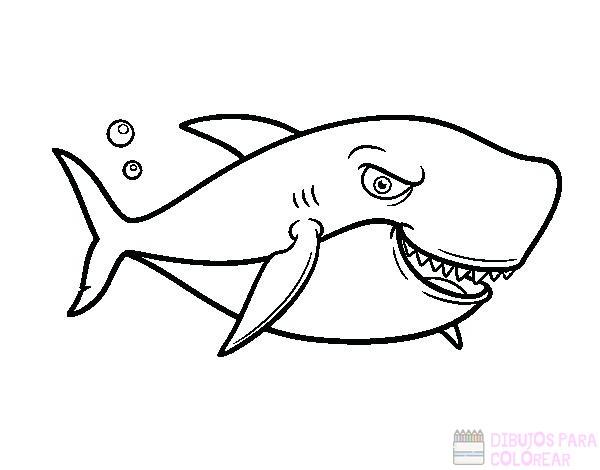 磊【+2750】Los mejores dibujos de Tiburones para colorear ⚡️